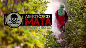 """Coquetel"""" com 27 agrotóxicos foi achado na água de 1 em cada 4 municípios – consulte o seu (SÃO BERNARDO DO CAMPO-SP está entreeles)"""