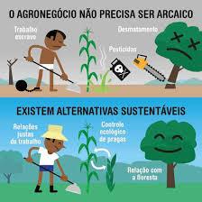 Meio Ambiente &Agronegócio