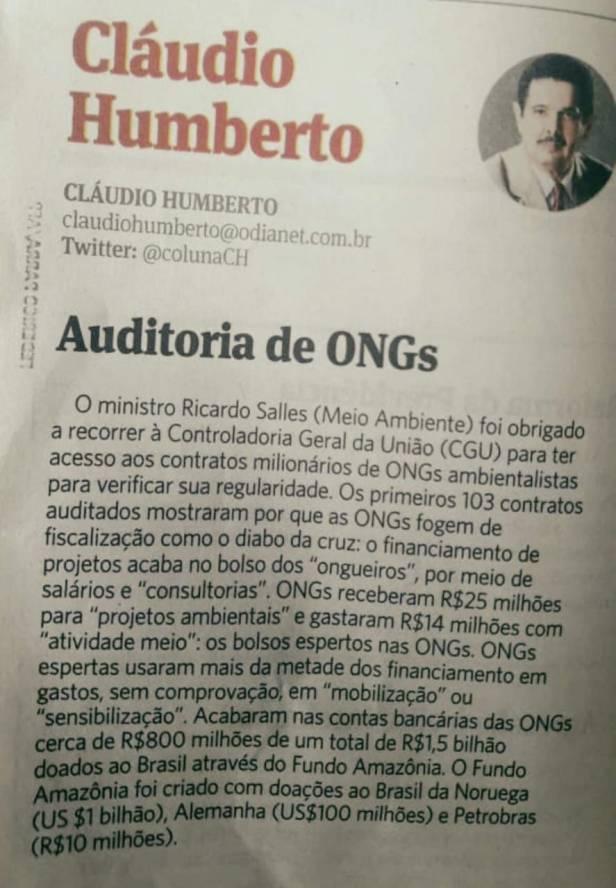 RICARDO SALLES AUDITORIA DE ONGS