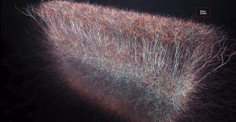 Muito interessante: Cientistas encontram universo multidimensional nocérebro
