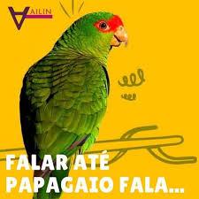 Prefeito Orlando Morando: Falar até Papagaio fala! quero verescrever..
