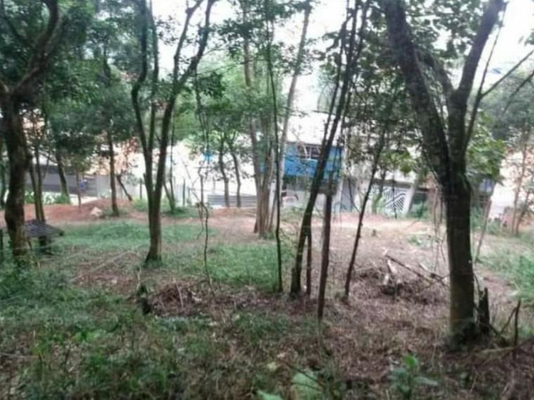 Meio Ambiente em São Bernardo? Terra semLei